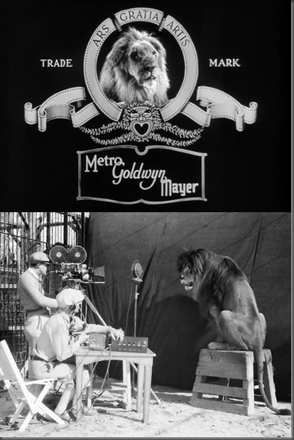 Impressively calm camera crew records Jackie the Lion for MGM studio's roaring lion production logo (1929) (via)