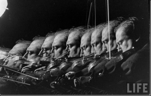 violinlife